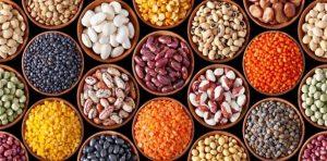 Фасоль — польза и вред для здоровья человека